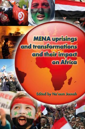 AMEC book: MENA uprisings and transformations and their impact on Africa